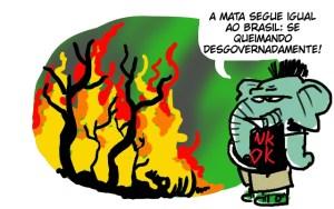 O Brasil queima