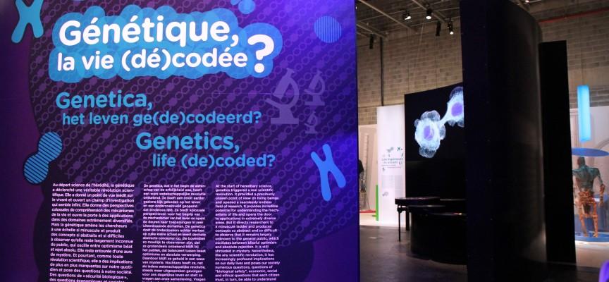 La nouvelle exposition du Pass, pour mieux comprendre la génétique et ses enjeux.