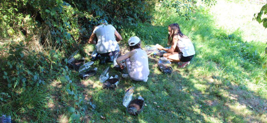 Lors du stage nature au Pass, les enfants construisent des hôtels à insectes