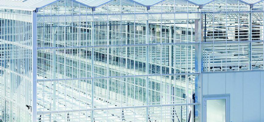 D'énormes serres hyperconnectées sur les toits de Bruxelles