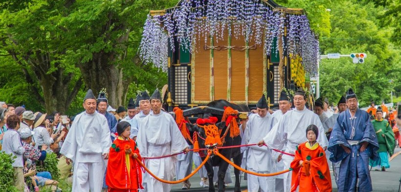 Passpod, Festival Musim Semi, Jepang