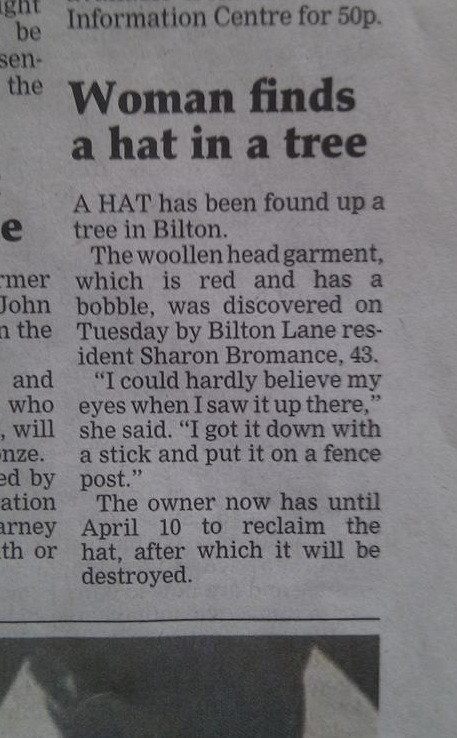 Hat in a tree