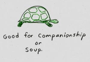 Tartarugas não tem o casco em formato de panela de sopa ao acaso...