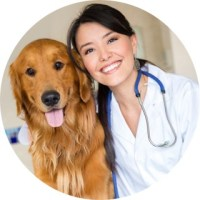 the picture of doctor with a dog
