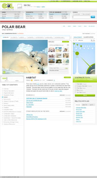 EOL Polar Bear Page