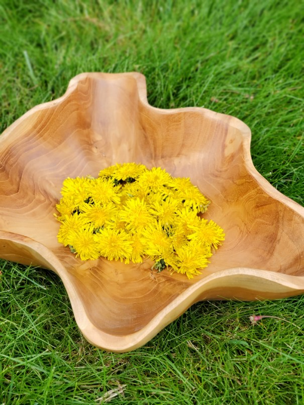 Fresh Dandelion in wooden bowl
