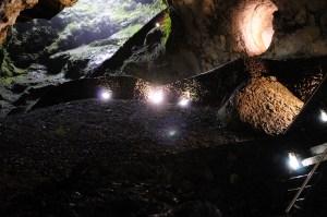 The volcanic pit Algar do Carvão (Terceira, Azores), the main location of the species Turyniphia cavernicola.