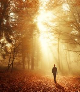 find stillness seo