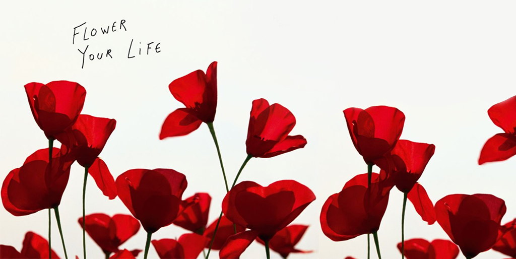 Flower Your Life