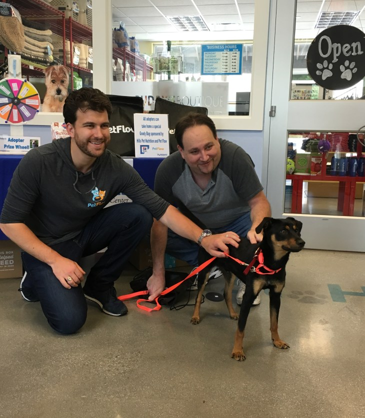 Arlo finds his furever home!