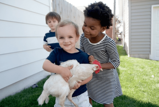 cute kids holding chicken