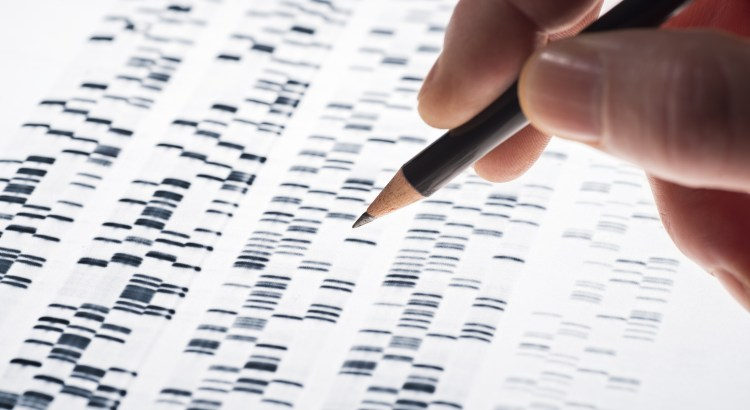 hand with a pencil drawing on DNA results