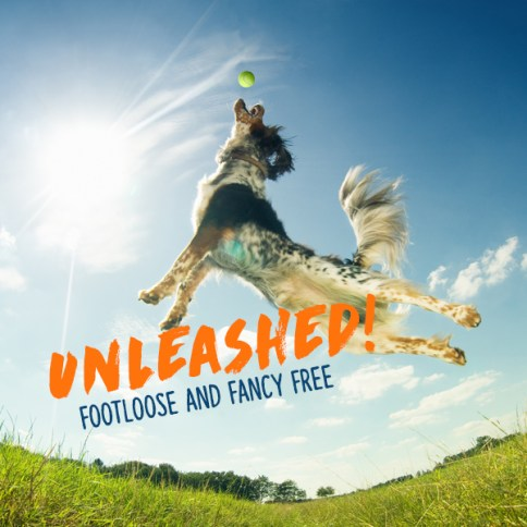 unleashed1