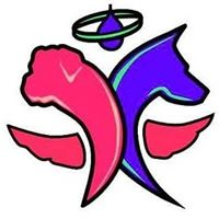 storms-angels-logo