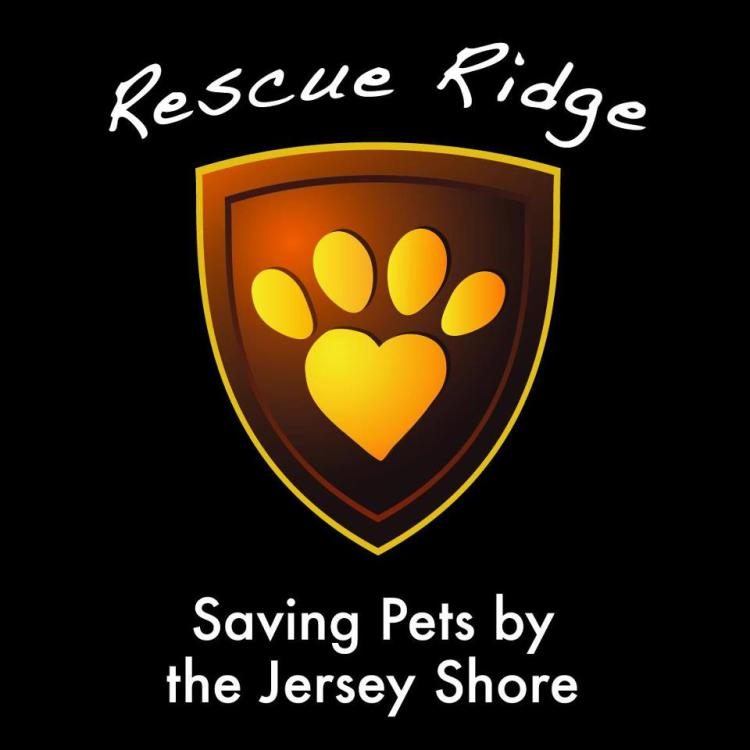 RESCUE RIDGE LOGO