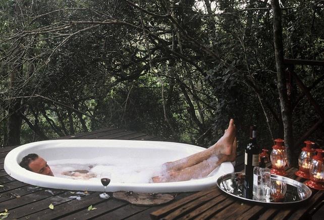 Knysna Resort Phantom Forest Blog