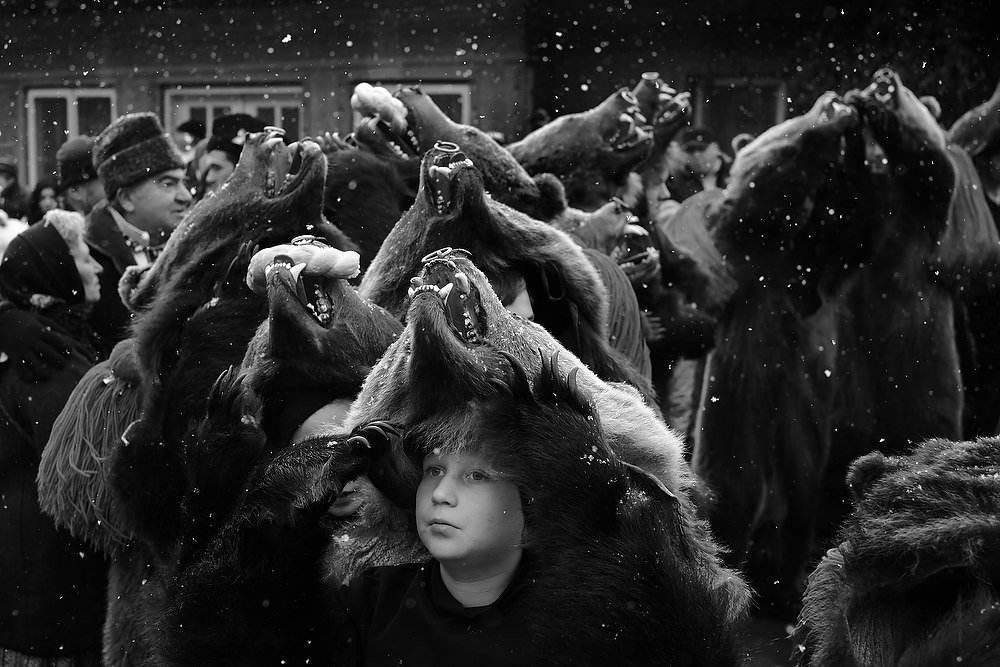 Dansul ursilor, foto: Dan Malureanu, 2015
