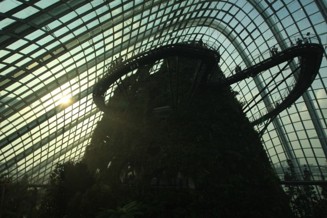 Gardens By The Bay in Singapore is Officially Opened !