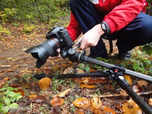 manfrotto 190cxpro3 review