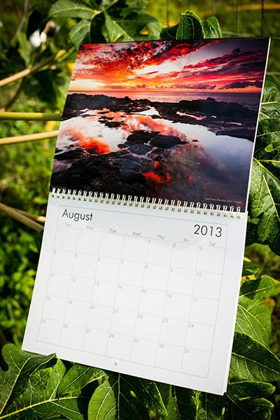 Grant Kaye's 2013 Calendar