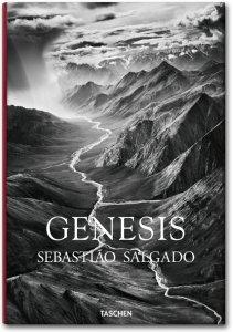 cover_fo_salgado_genesis_trade_gb_1307081418_id_618549