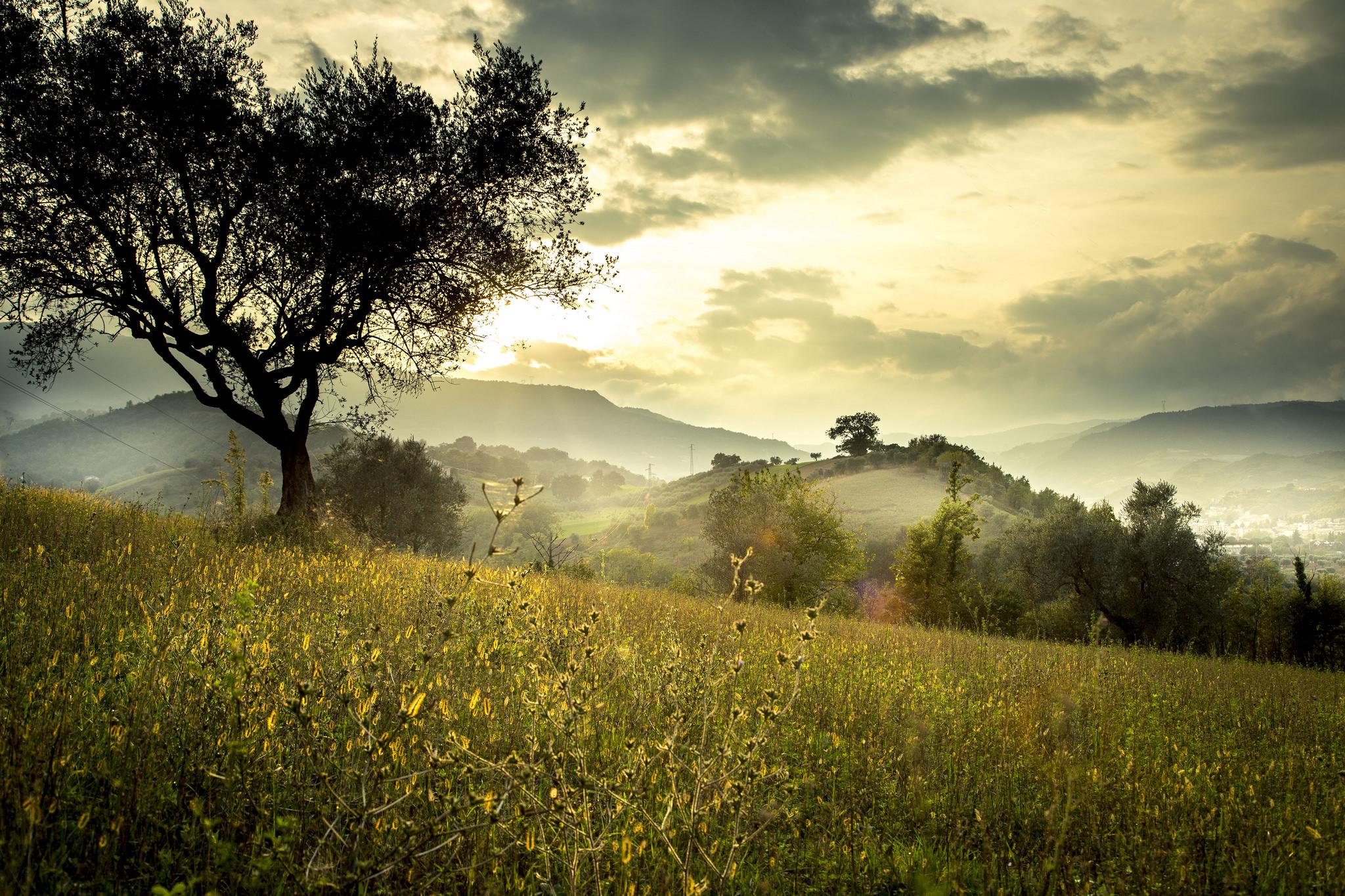Improving Photography Skills Landscape Images Phowd