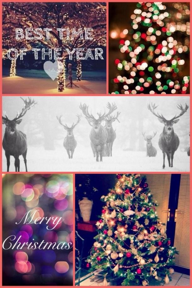 christmas1 christmas2 christmas3 christmas4