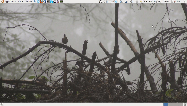 Ubuntu Linux 11.04 na Asus k50c i SIS 671