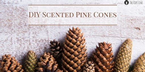 D.I.Y Scented Pine Cone (1)