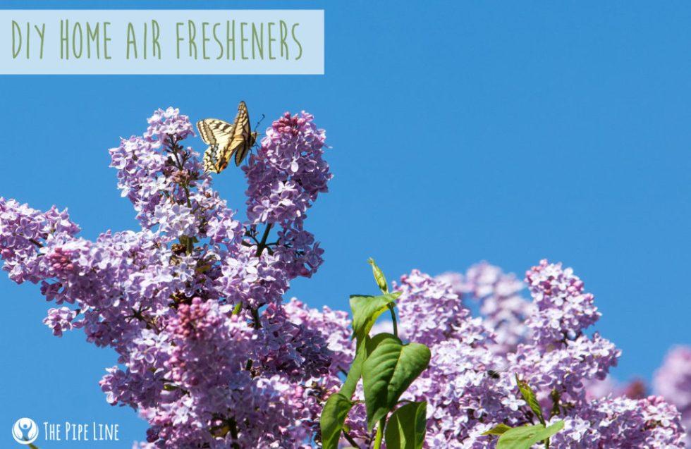 DIY Home Air Fresheners