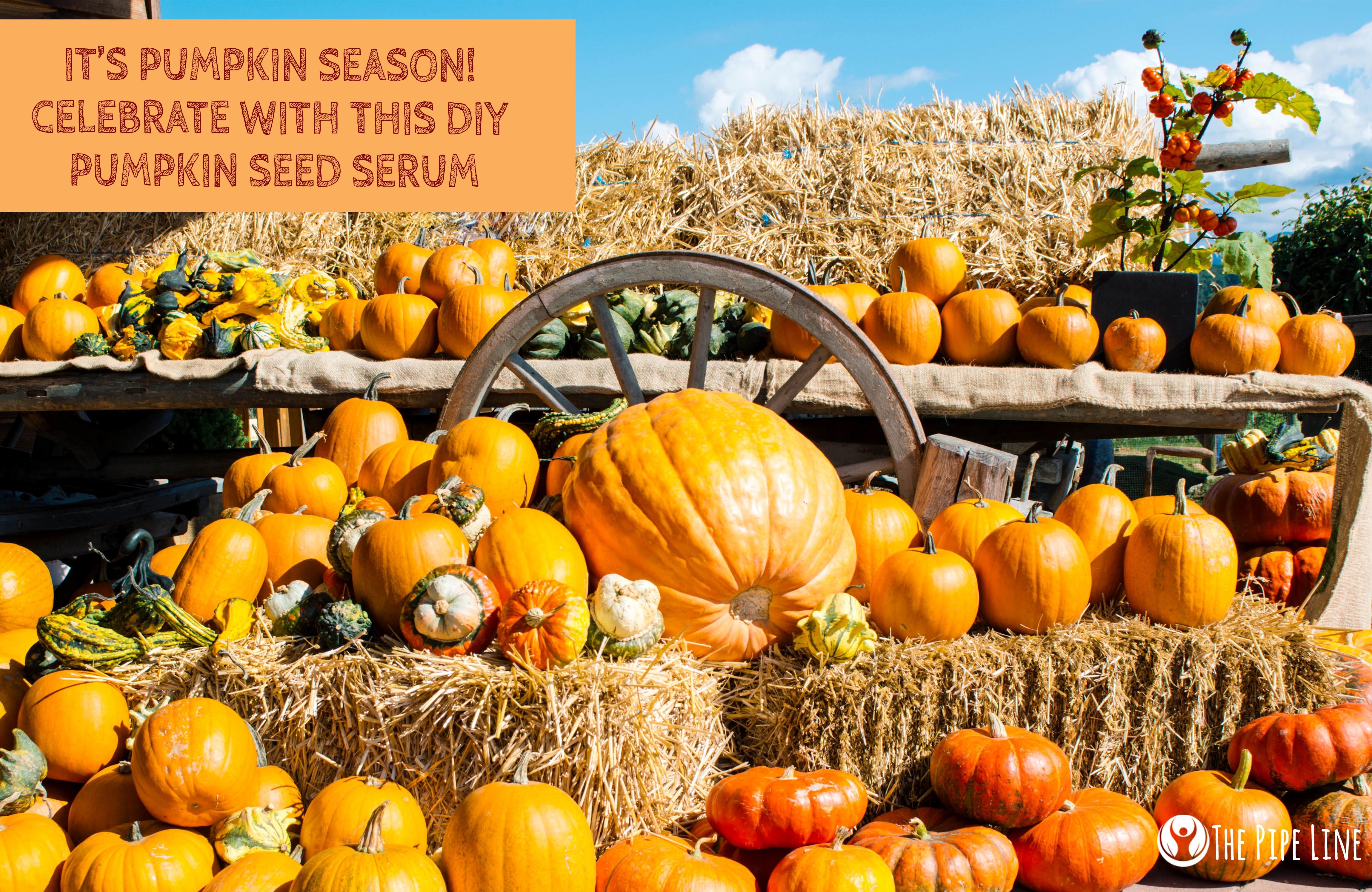 Pumpkin Seed Oil Benefits Prostate & Heart Health in 2020