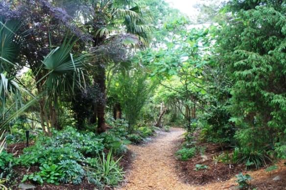 Tropical garden pathway