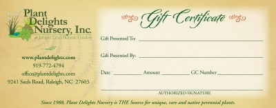 PDN Gift Certificate - Always the perfect gift!