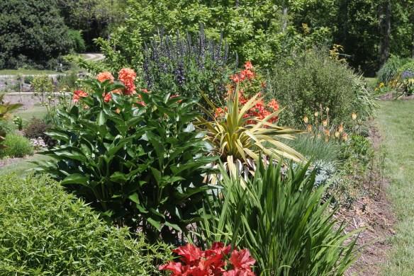 2015 9309 Souto garden in spring