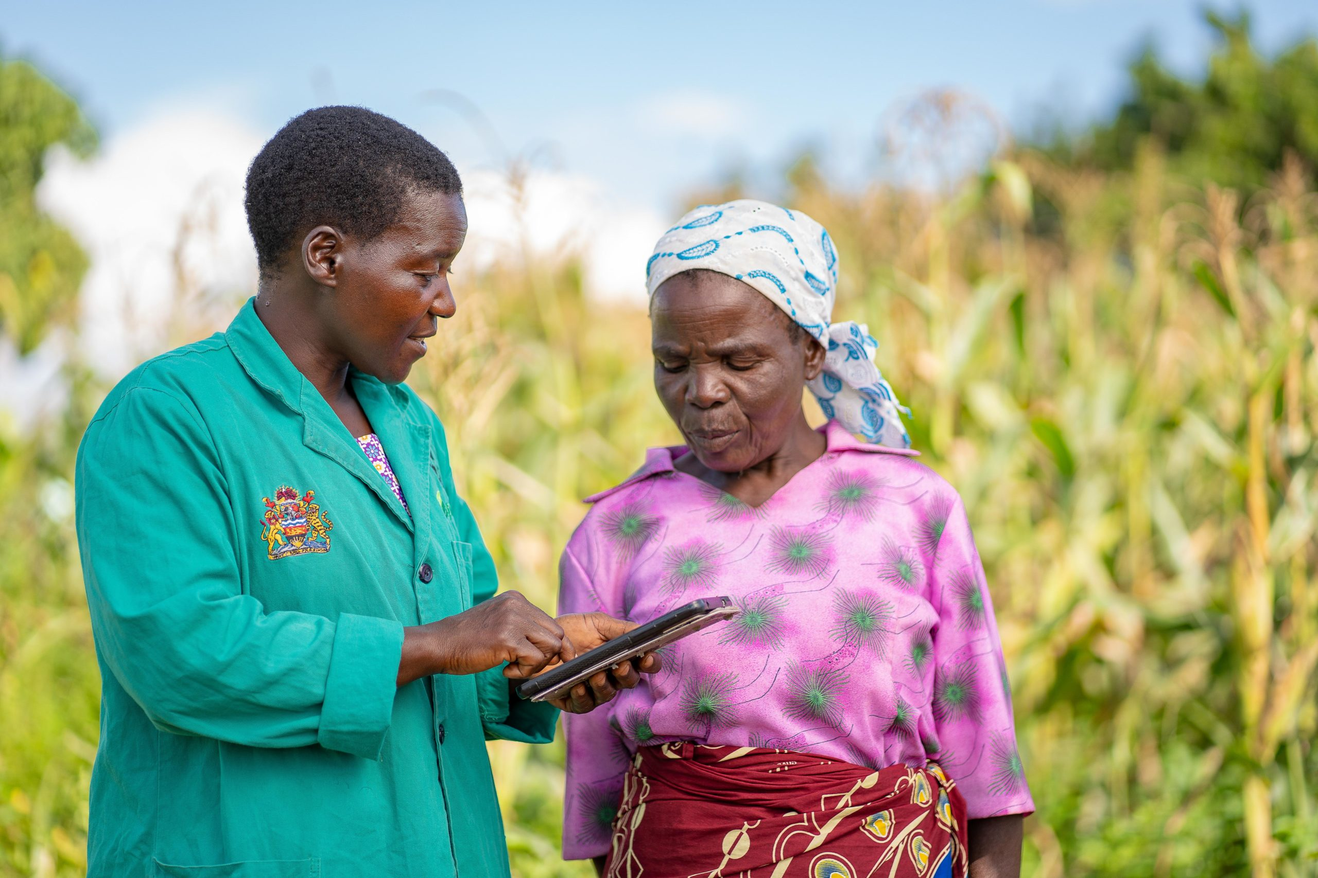 Digital sustainability: Plantwise tools supporting smallholder farmers