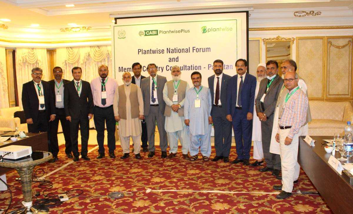 Plantwise Pakistan: National Forum boosts stakeholder cooperation