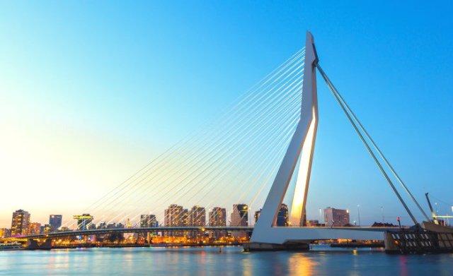 A Day in Rotterdam: Erasmus Bridge