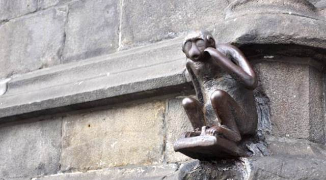 A Day in Mons: Mons Monkey