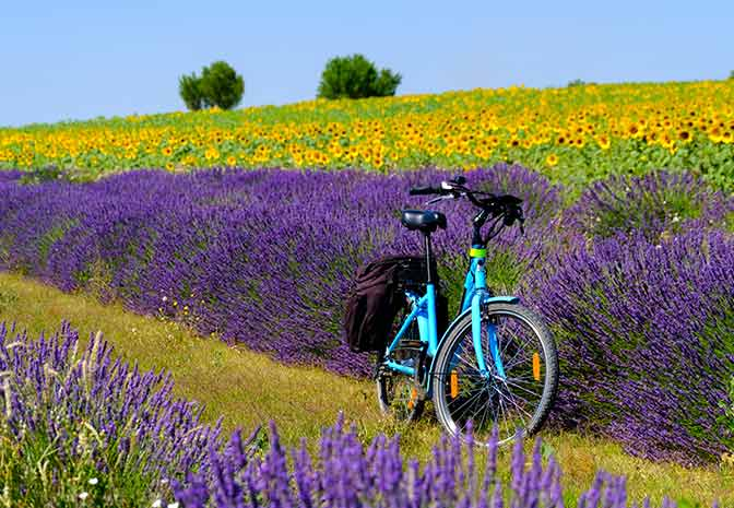 The Best Places for Cycling in France