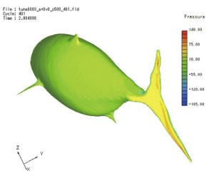 Surface pressure on a bluefin tuna computed using SC/Tetra. Analysis by Kinki University. Image from Software Cradle. See link below.