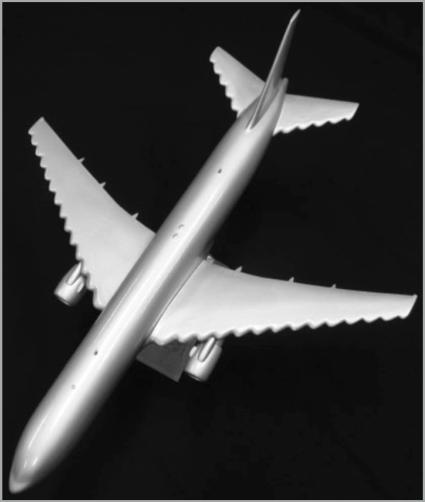tubercle-wings