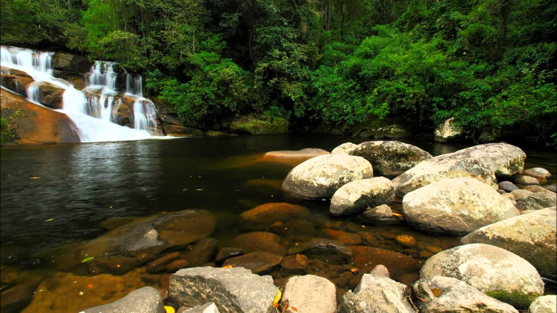 Cachoeiras de Paraty - Pedra Branca é linda e convida ao mergulho! –  Experiência Imperial