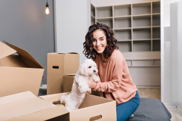 raças de cachorros para apartamento