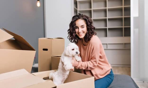 Conheça as 7 melhores raças de cães para apartamento