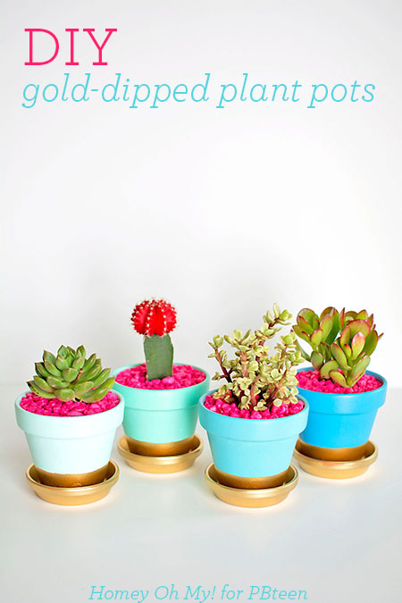 DIY-Gold-Dipped-Plant-Pots3