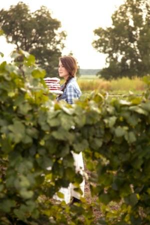 vineyard_inspiration_savannah