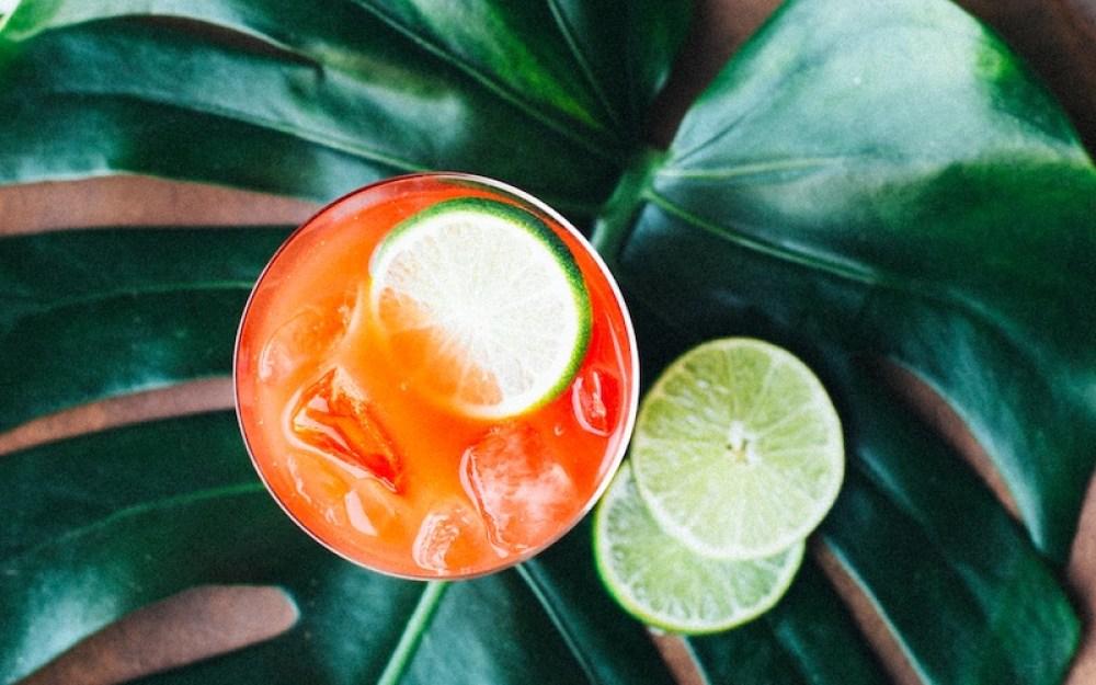 Summer Cocktail Recipe Justina Blakeney