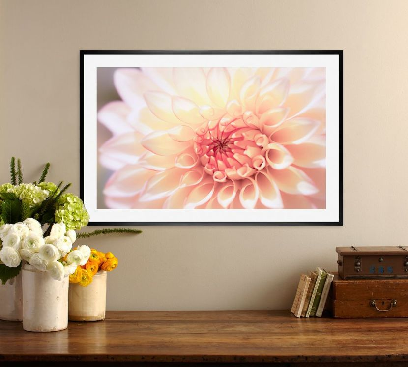 in-love-with-dahlia-framed-prints-by-ana-v-ramirez-z