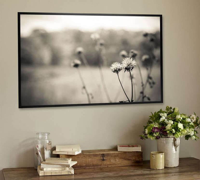 out-in-the-field-framed-prints-by-ana-v-ramirez-z