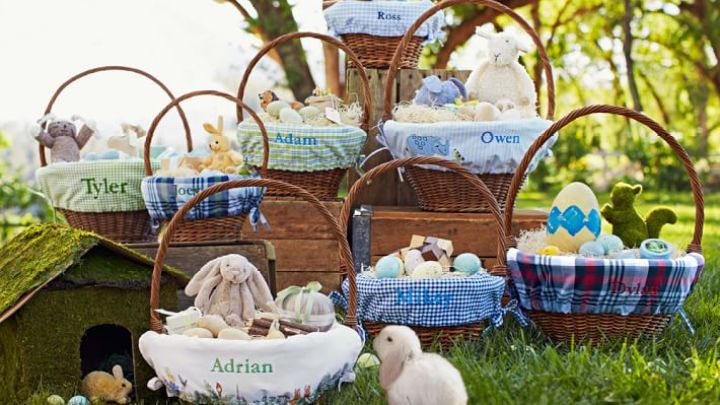 peter-rabbit-easter-basket-liners-o